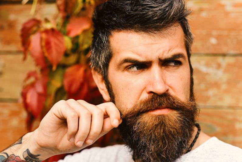 U bradi zna biti više patogenih bakterija nego u psećem krznu