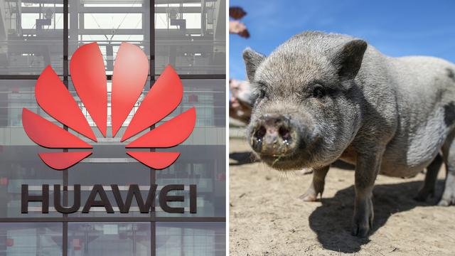 Huawei je razvio 'njuška ID'