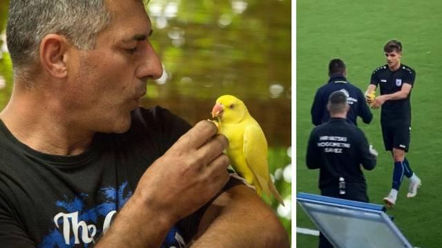 Papiga se vratila kući: 'Sad me zezaju da navija za Cibaliju...'