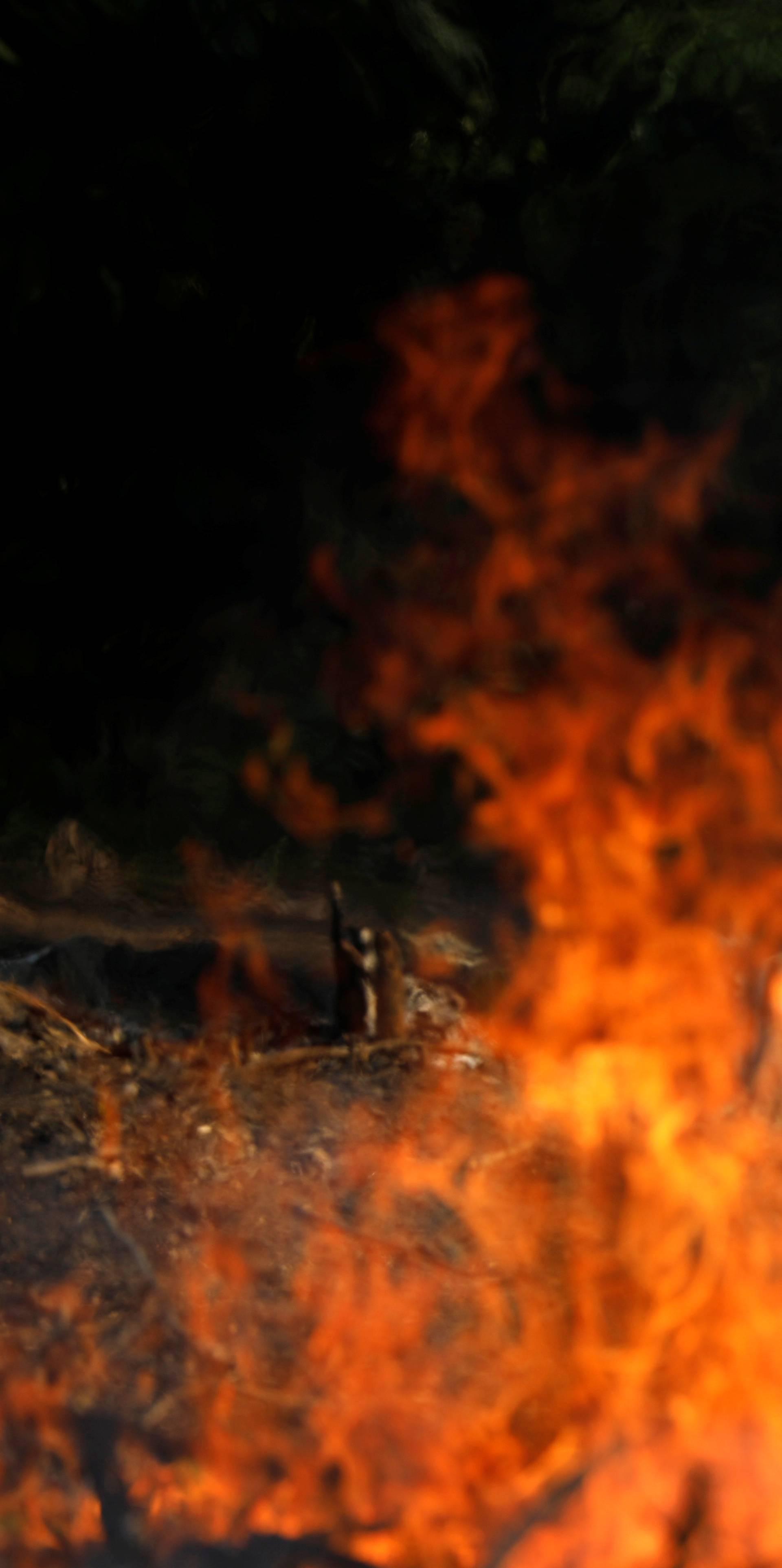 'Požar su nam podmetnuli, a vi svijete se prestanite miješati!'