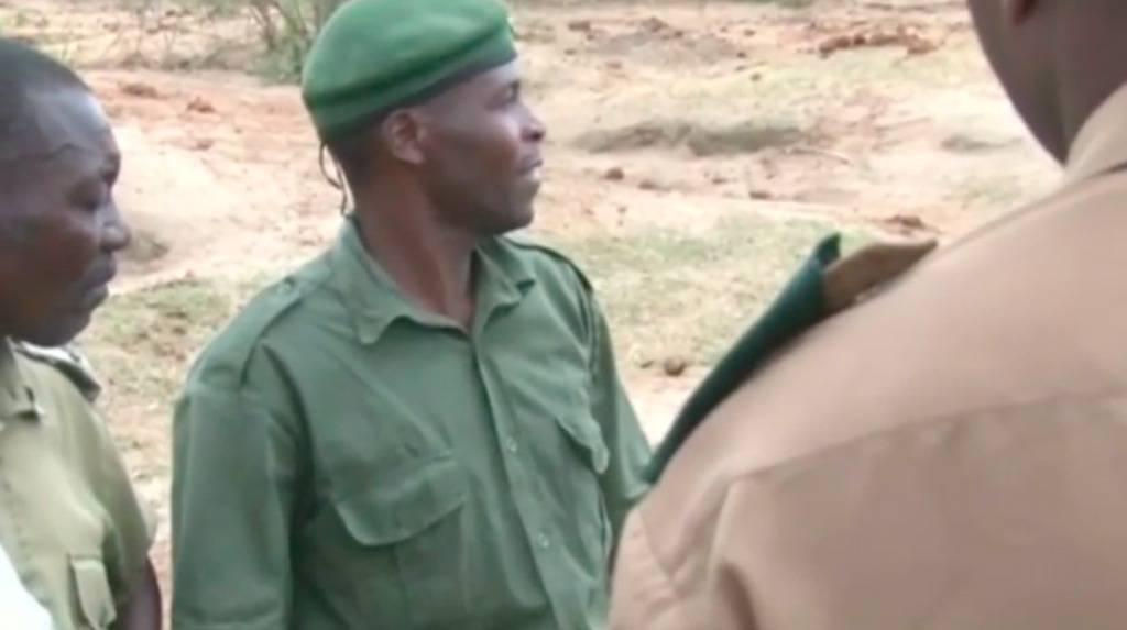 Uznemirujući video: Ubili su cijanidom više od 60 slonova