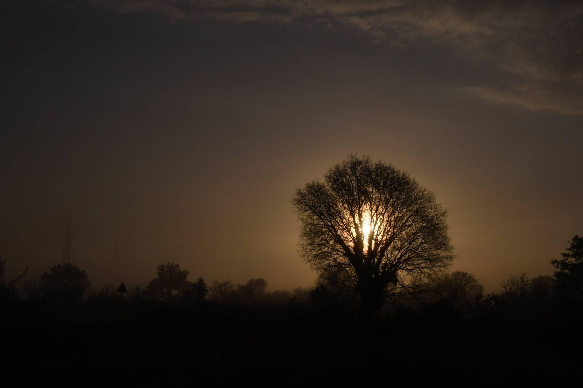 Čarobni prizori: Maglovita jutra okupana s prvim zrakama sunca
