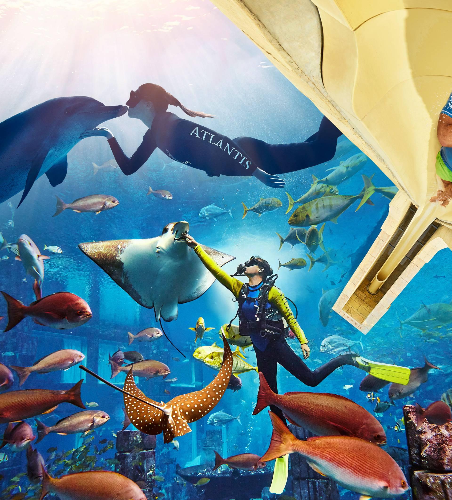 Putnici Emiratesa mogu besplatno posjetiti vodeni park