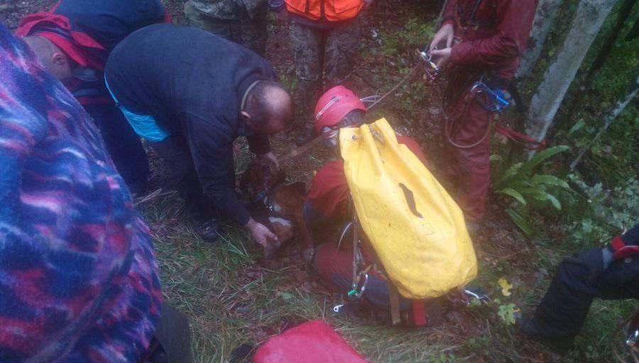 HGSS spašavao tri lovačka psa iz jame duboke 70-ak metara