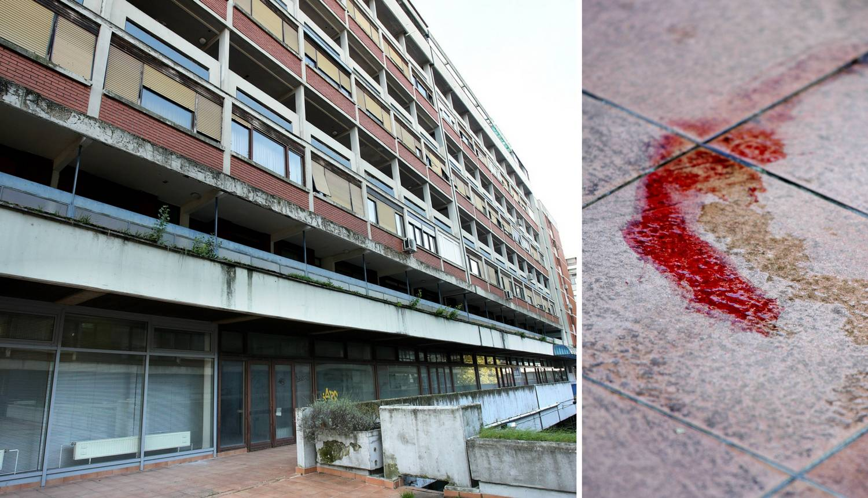 Bacio dva psa s 3. kata zgrade: 'Čuo se strašan cvilež i vrisak'