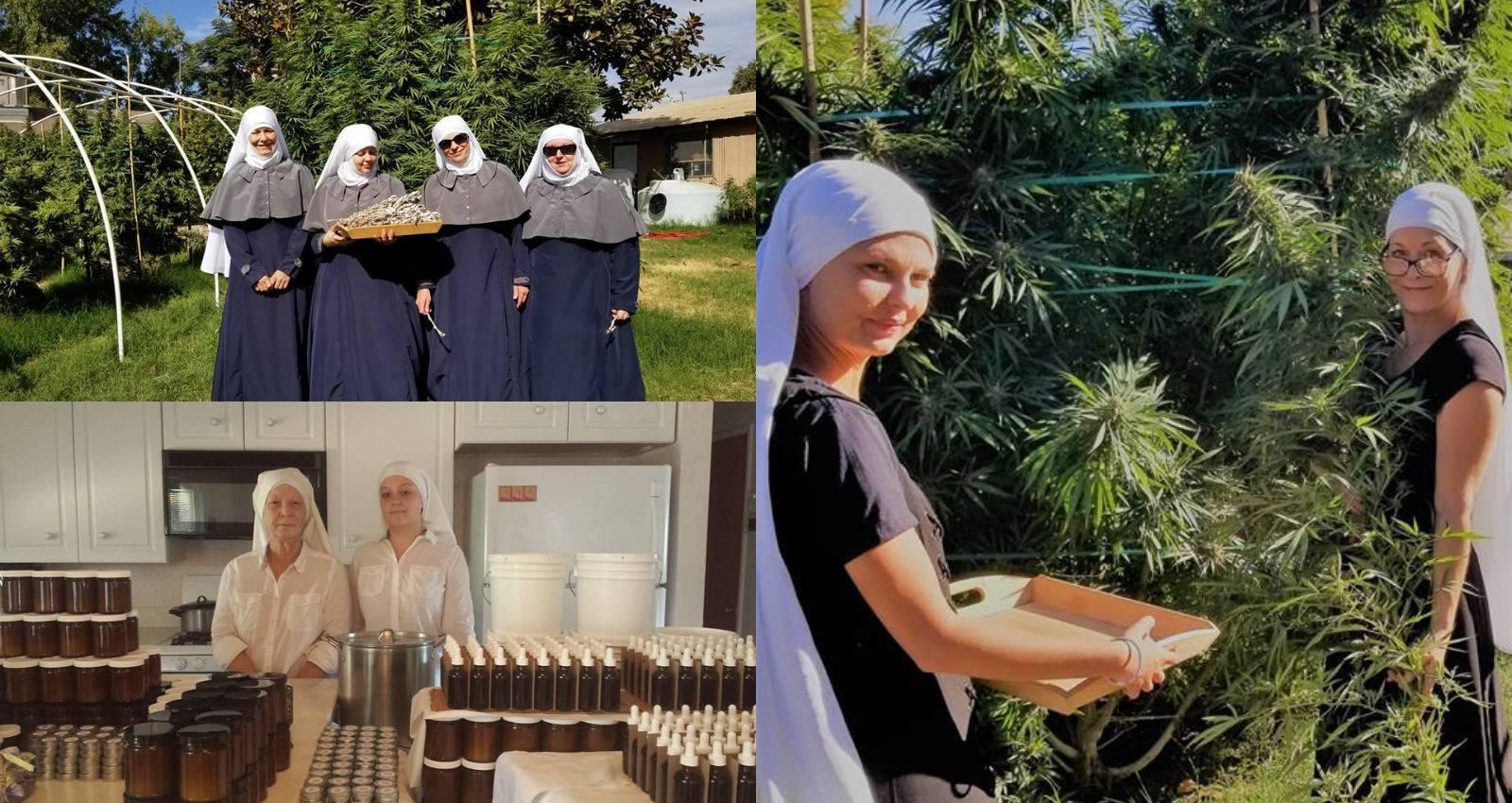 'Časne' uzgajaju medicinsku marihuanu: To je naša religija