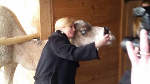 Kolinda preselila ured i snimila selfie s đurđevačkom devom