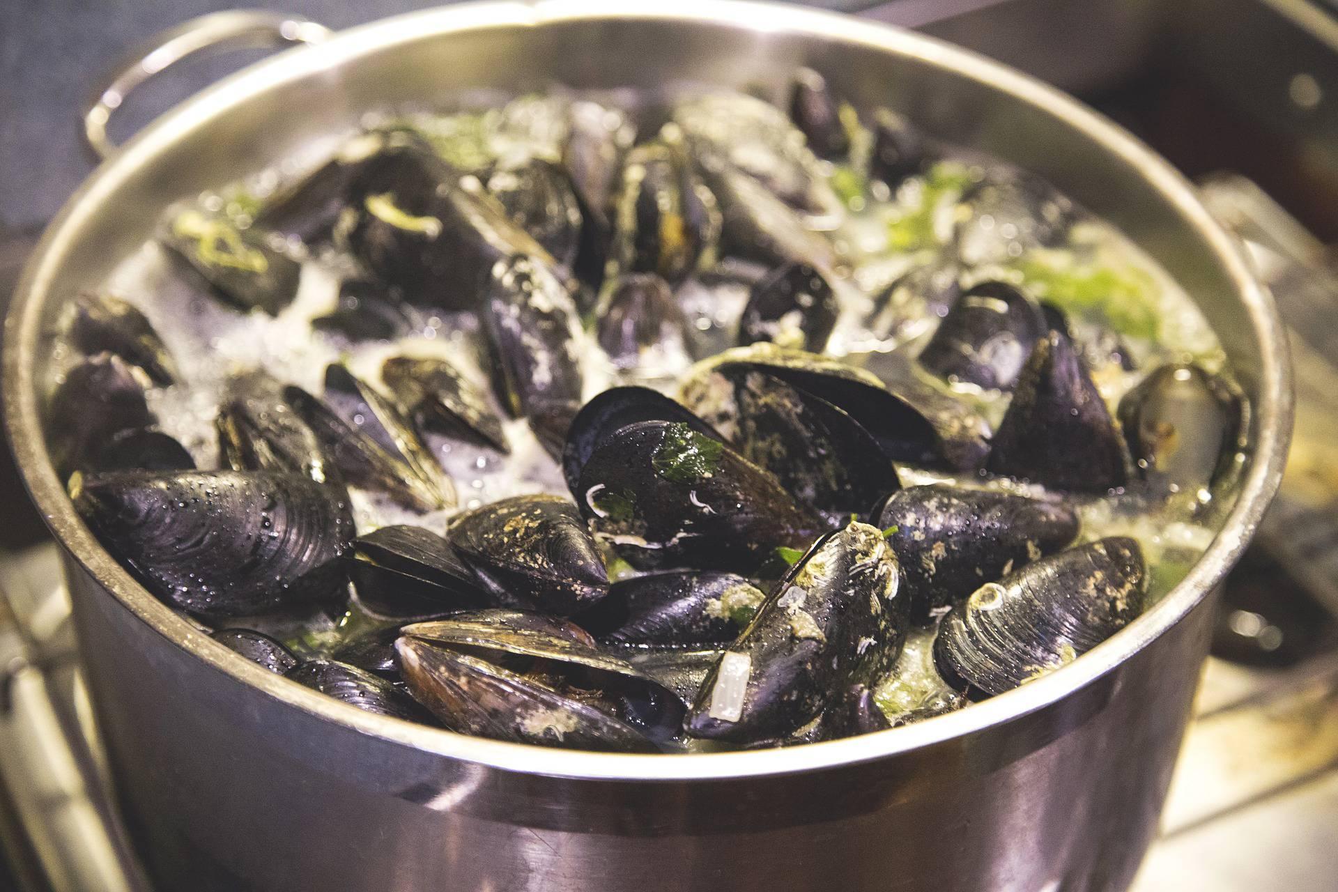 Recept za mediteranske dagnje na buzaru - zdravo i jako fino