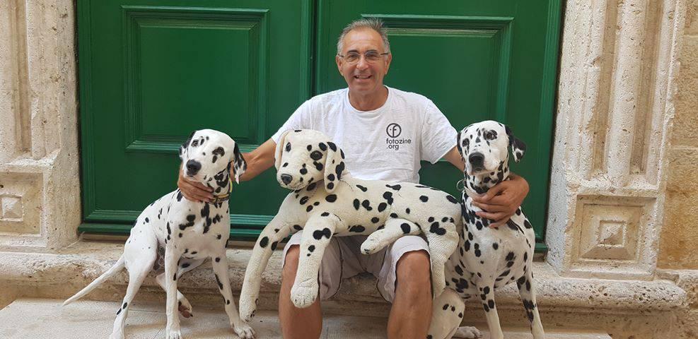 Dalmatineri u Šibeniku