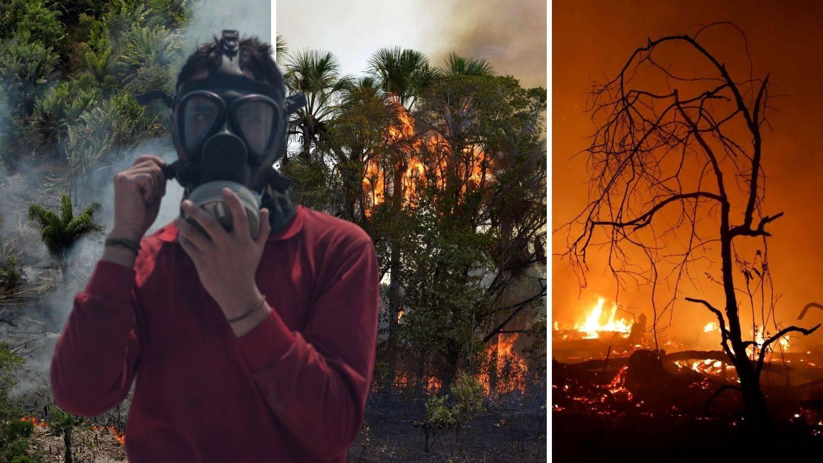 'Požar u Amazoniji mogao bi nas natjerati na brigu o prirodi'
