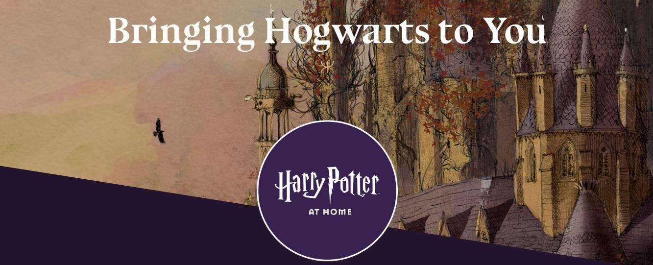 Harry Potter kod kuće