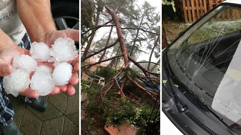 Vjetar srušio drvo, tuča oštetila aute: 'Mogla je nekoga ubiti!'