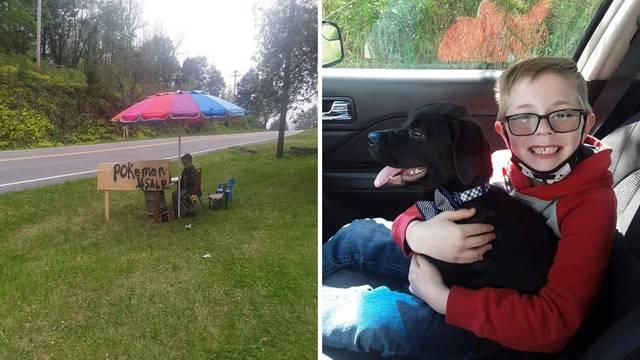 Dječak (8) prodao ogromnu kolekciju Pokemon karti kako bi spasio život svog bolesnog psa