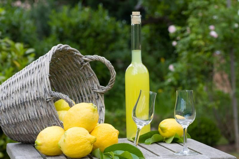 Ne znate što ćete s limunom? Donosimo vam pregršt ideja