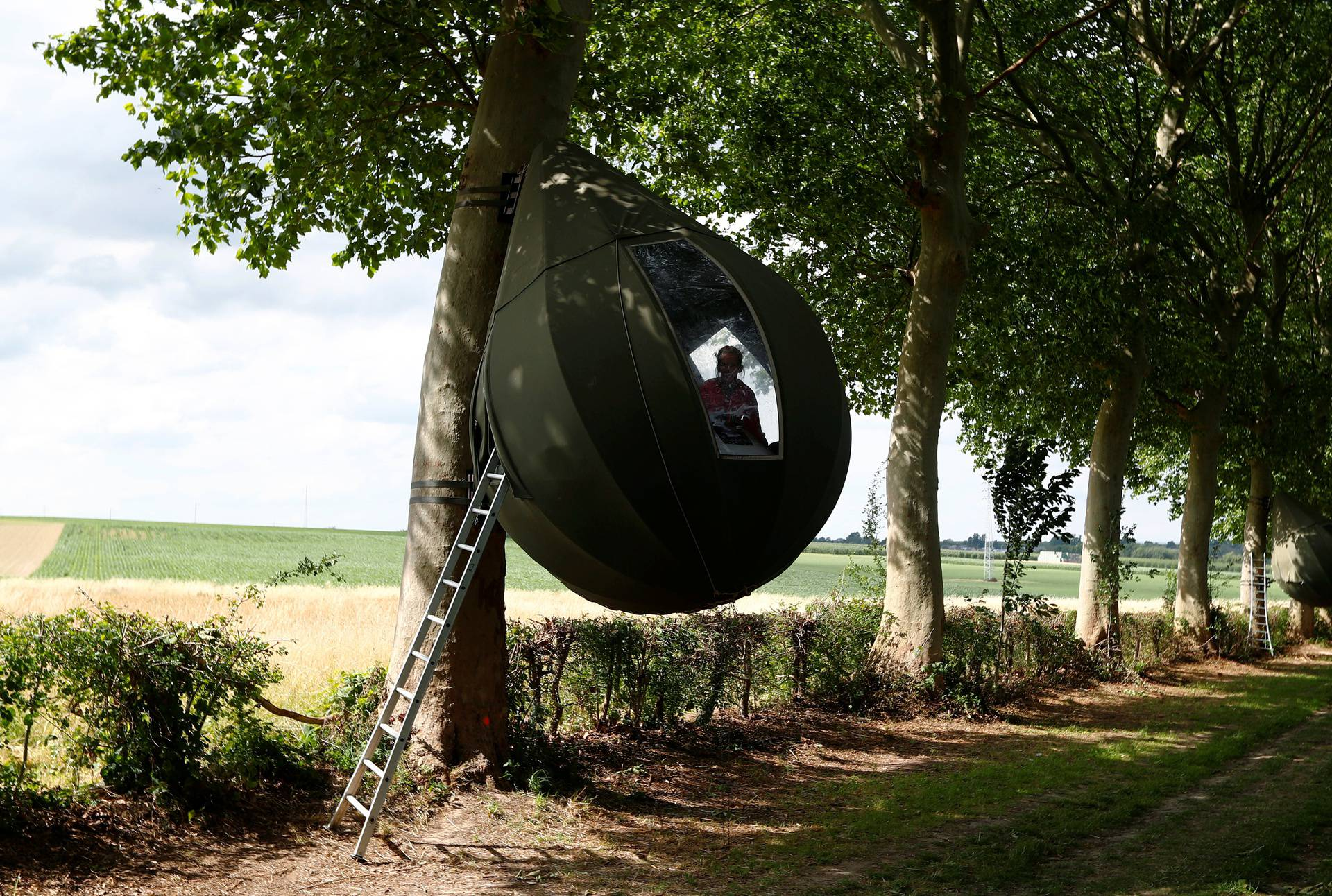 Tear drop-shaped tent hanging from a tree near Borgloon