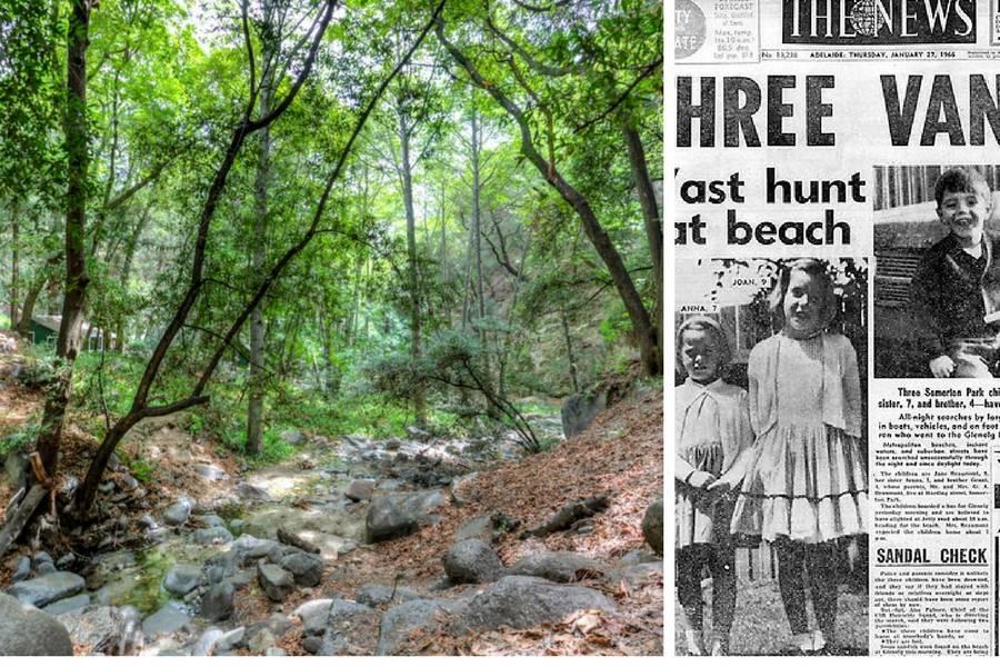 Šuma užasa: Djeca su nestajala u njoj, a razlog je bio stravičan