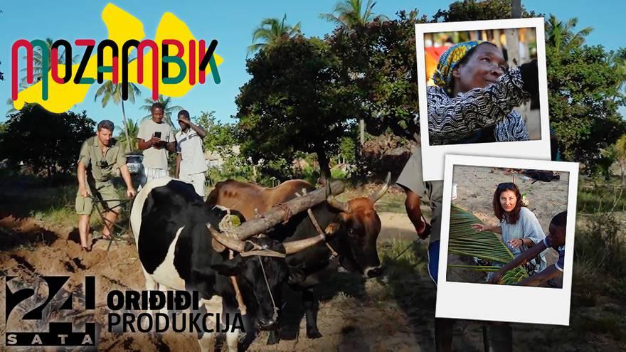 Radna akcija: Sara gradila krov od palme, Dušan orao s bikom