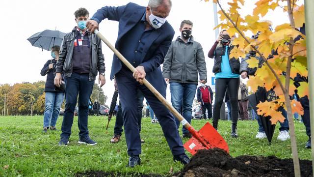Zagreb: Oko crkve BDM Anđeoske u Dubravi zasađeno je 250 mladih stabala