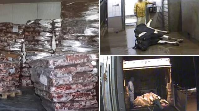 Pao na granici: Slovenac vozio 'čudno' poljsko meso za kebab