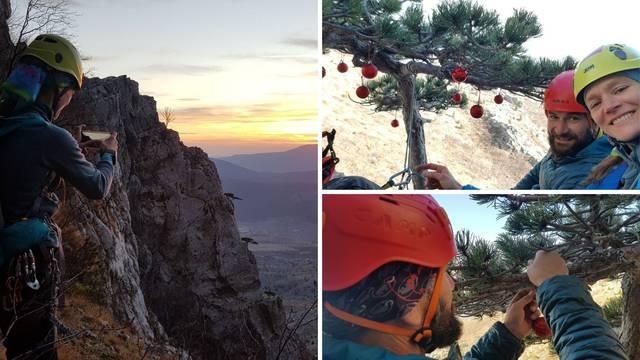 Planinari iz Splita penjali se pet sati kako bi okitili tri usamljena borića na stijeni: 'Nije bilo lako'