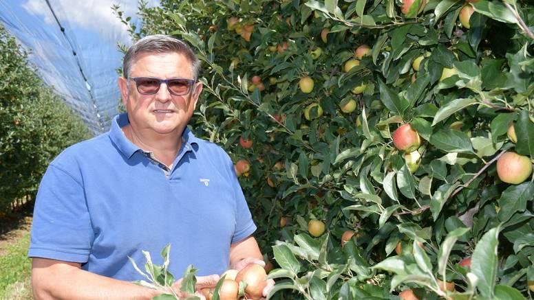 Naše prve ovogodišnje jabuke uskoro će na police trgovina, prva cijena bit će promotivna