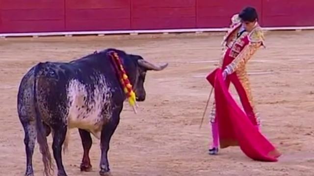 Umro ženi pred očima: Bik je toreadoru rog zabio u prsni koš