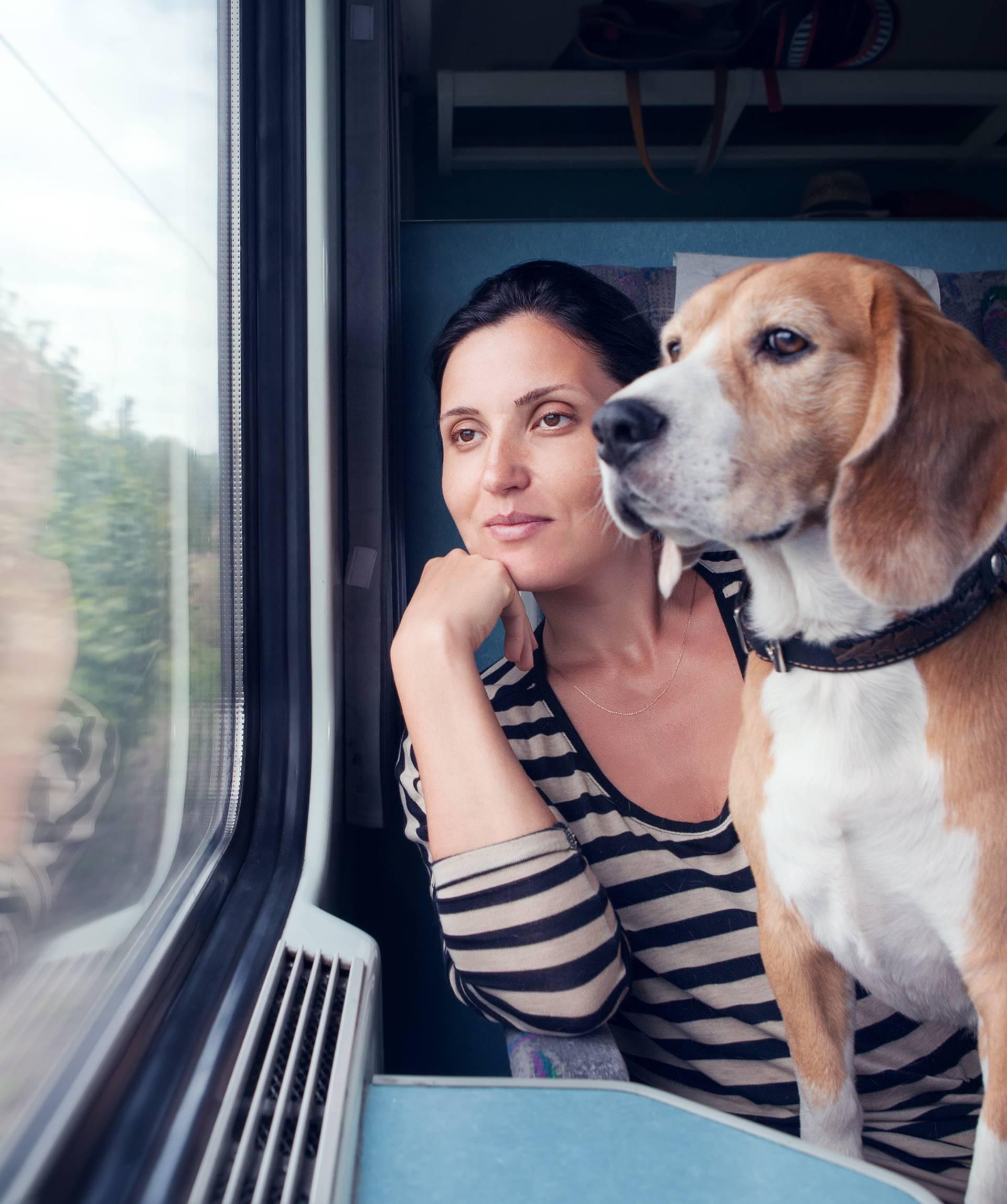 Pas može umiriti 'gazdu', ali preuzima i njegove 'loše vibre'