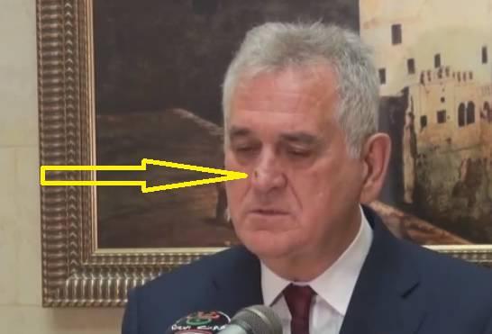 Baš nije odustajala: Nikolić se 'borio' s  - dosadnom muhom