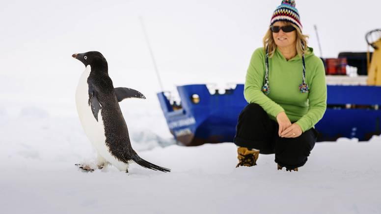 Ledena turistička meka: Put na Antarktiku sve je popularniji