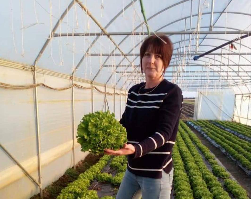 Svi bi domaće: 'Vadimo povrće iz zemlje i odmah ide kupcima'