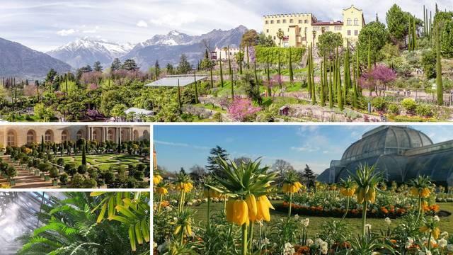 Virtualno razgledajte predivne botaničke vrtove i opustite se