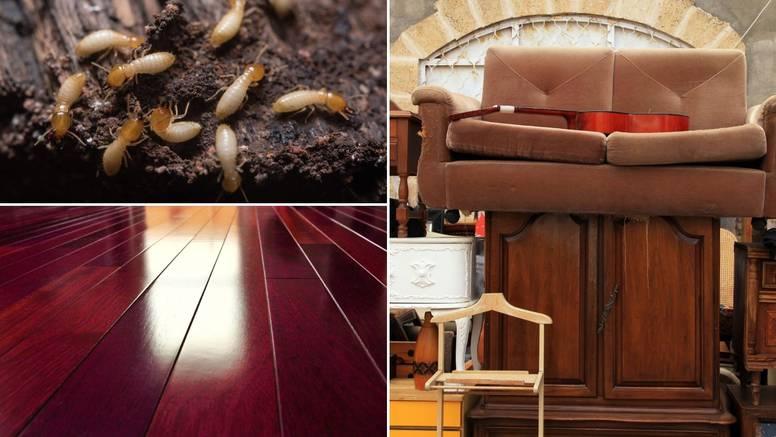 7 mjesta i stvari koje privlače termite u dom - provjerite ih