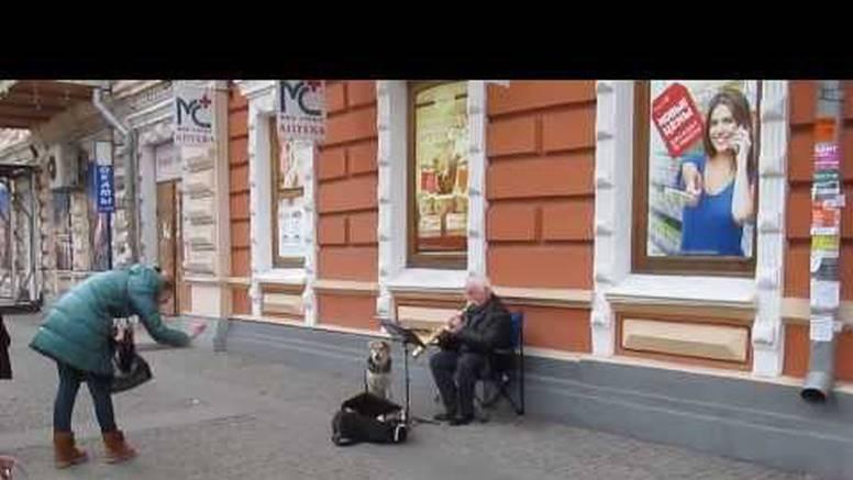 On pjeva: Pas lutalica pomaže uličnom sviraču