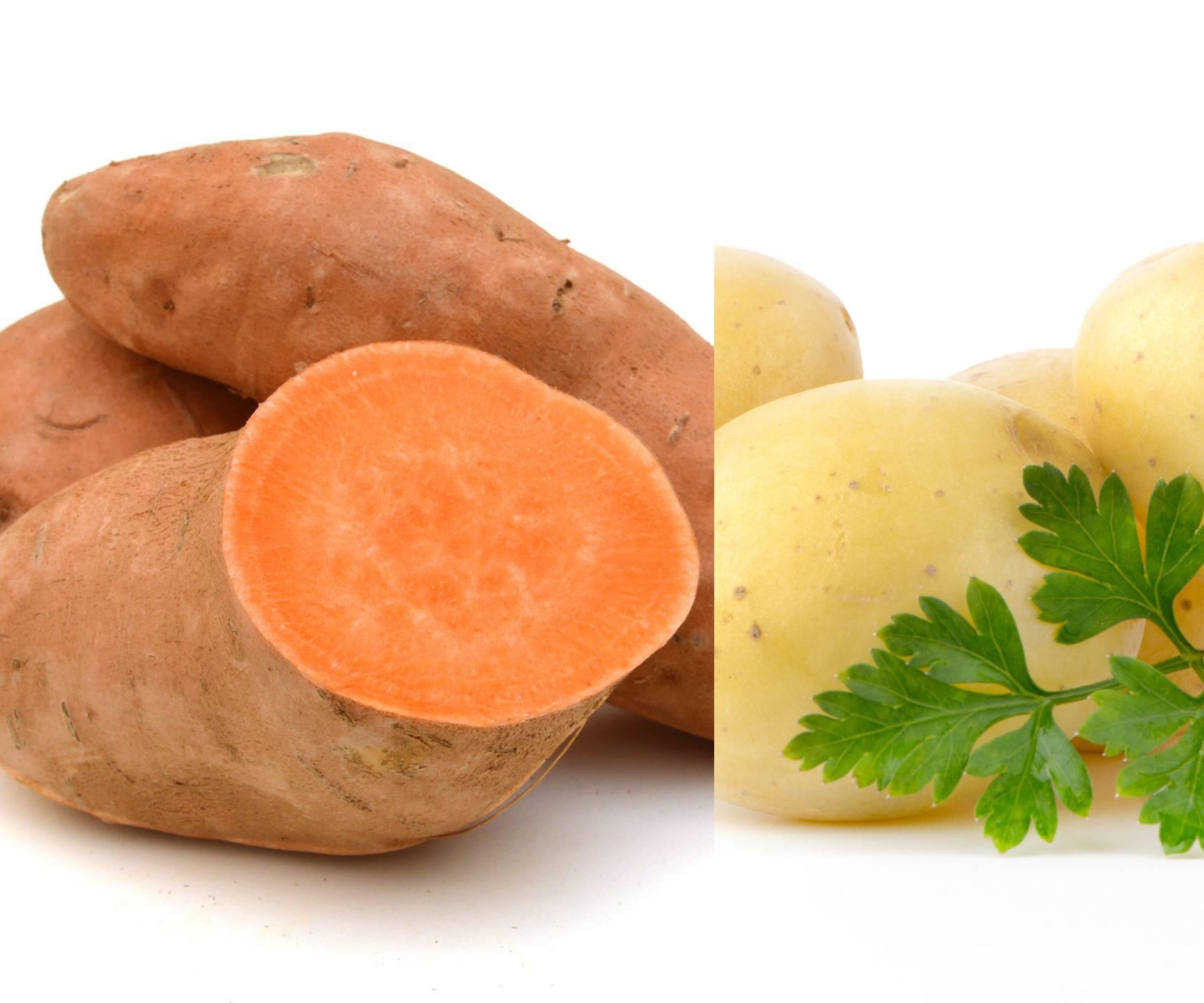 Batat je dobar kod dijabetesa, krumpir pospješuje mršavljenje