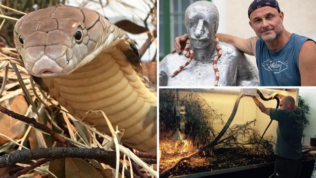 Kraljevska kobra Elvis hit je izložbe na zagrebačkom Štrosu