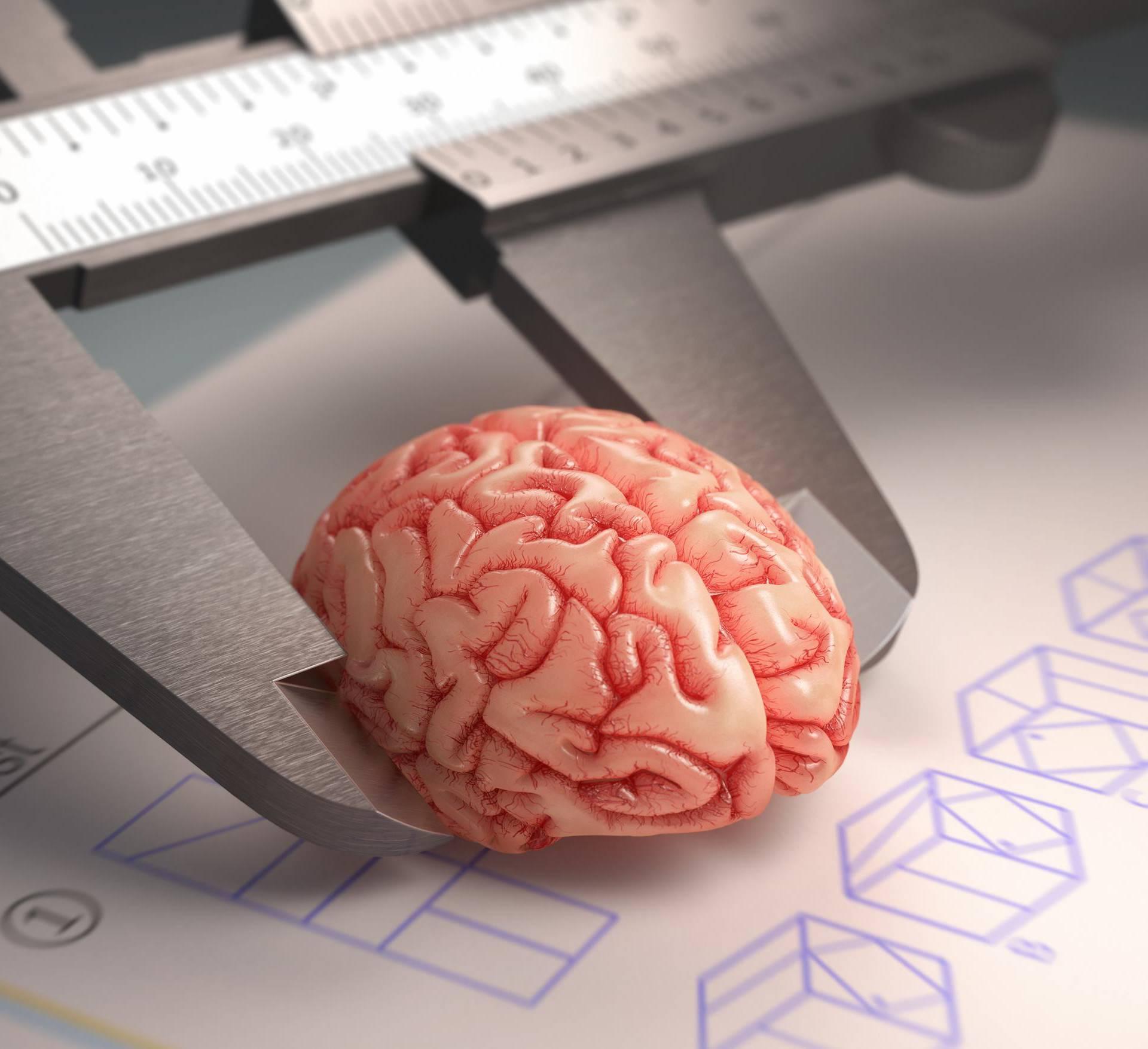 Stručnjaci: Što zapravo test inteligencije otkriva o čovjeku