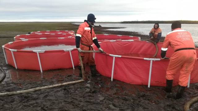 Rescuers take part in a clean-up operation following a huge leak of fuel into the river after an accident at a power plant outside Norilsk