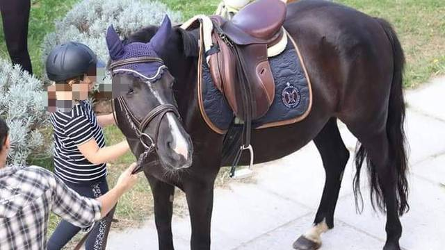 Prikupili ste preko 70 tisuća kuna! Konj ostaje, a udruga za terapijsko jahanje će preživjeti
