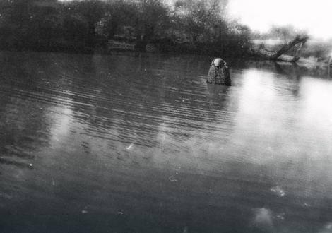 Misteriozna neman iz Dunava: Ribiči prenose legende o Kemzi