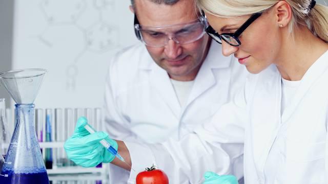 U Hrvatskoj proizvodnja GM hrane zabranjena, a uvoz nije