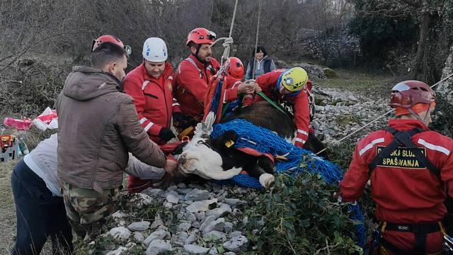 HGSS spasio junicu iz bunara u Lećevici: Nije to bila mala stvar!