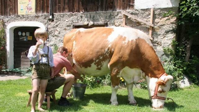 Karntnermilch
