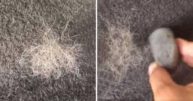 Žena otkrila genijalni trik kako ukloniti pseću dlaku s tepiha
