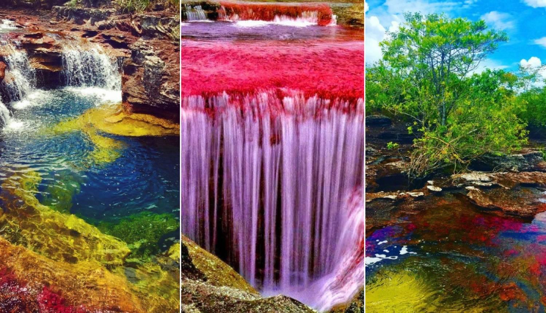 Moć prirode: Dugina rijeka u Kolumbiji oduševljava bojama