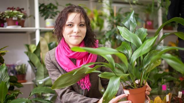 Prirodna oaza bez puno muke: 5 biljaka koje ćete lako održavati