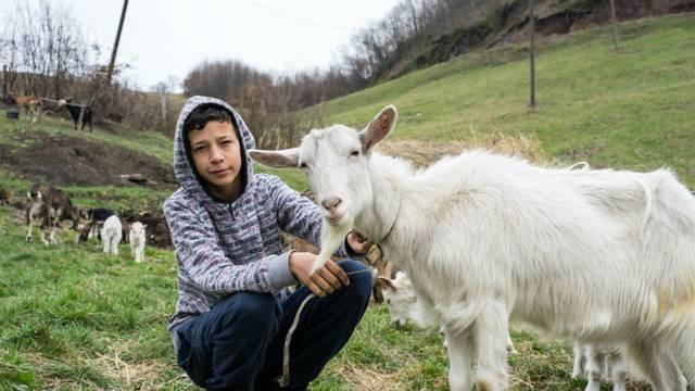 Sad i on ima životinje: Dječak koji je želio kozu sad ih ima 25