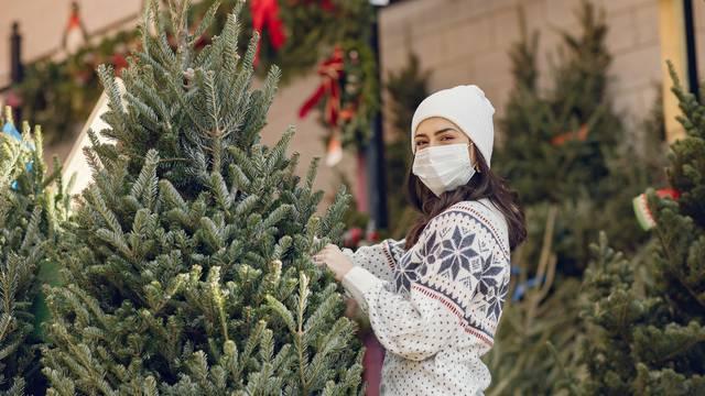 Jela ili smreka za božićno drvce: Otkrijte koja je bolja za vaš dom