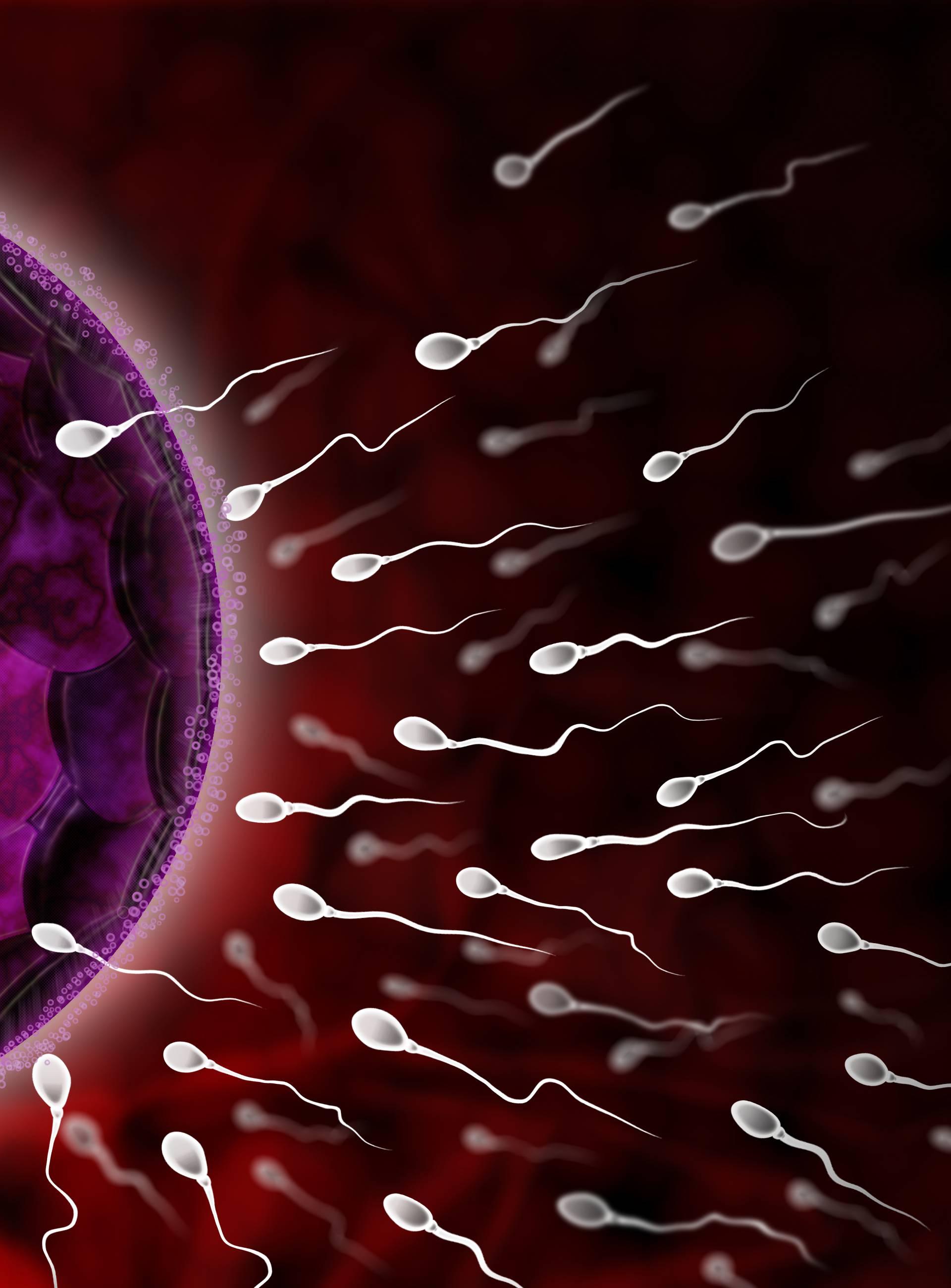Presadili mu koštanu srž pa u spermi sad ima donorovu DNK