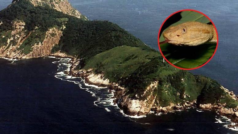 Jezivi otok zmija: Na njemu živi vrsta čiji otrov otapa ljudsko meso i zabranjen je za posjet