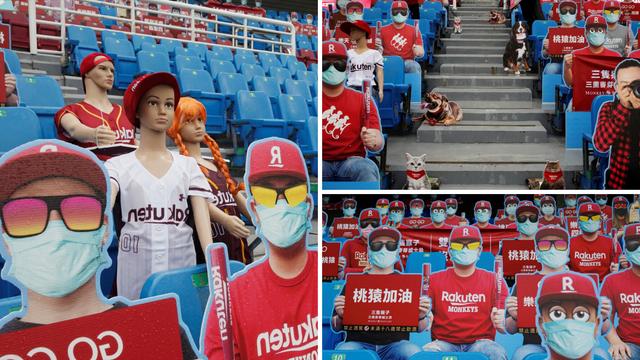 Komedija na Tajvanu: Započeli sezonu, umjesto navijača lutke